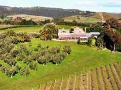 Stonyridge Vineyard, Veranda Café and Tasting Lounge