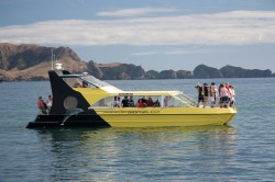 Discovery III Charter Boat Bay of Islands – Paihia Bay of Islands 15m Power Catamaran